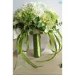 Grüne und weiße Match Ball Seide Chrysantheme Braut hält Blumen