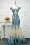 Natürliche Taille Abperleffekt Meerjungfrau Spitzenüberlagerung Tüll Abendkleid